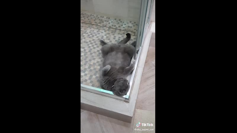Спит сладко храпя
