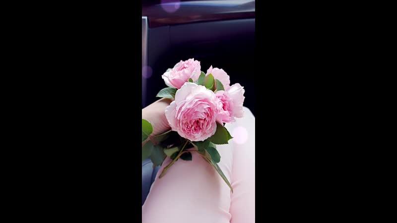 Так много душевного тепла в одном маленьком букете. Розы из маминого сада.
