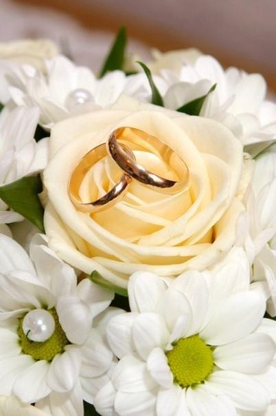 Торжественная регистрация брака в ЗАГСе – это важный момент в жизни жениха и невесты: они становятся