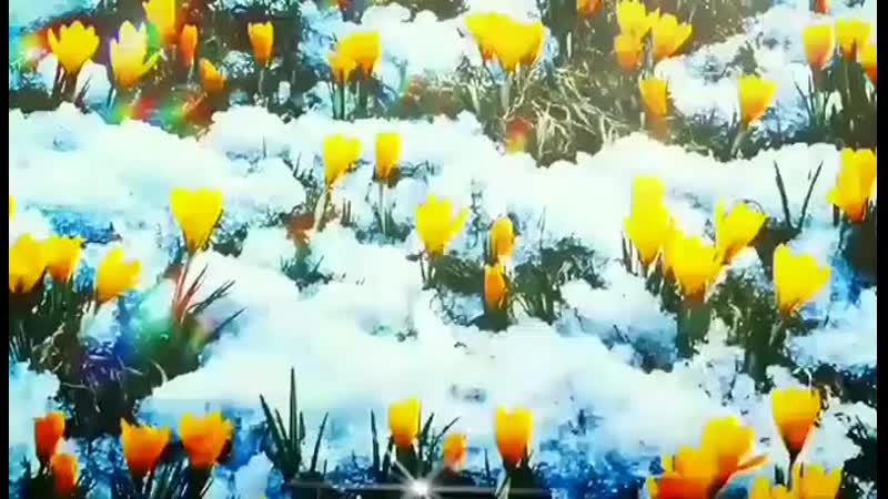 Доброе утро! Еще чуть-чуть и наступит весна! Музыкальная открытка с добрым утром.mp4