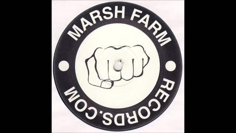 The Marsh Farm Collective The Jungle Birds Song