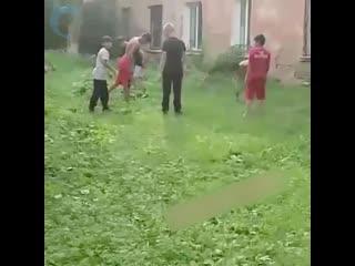 забив школьников за сердце дамы