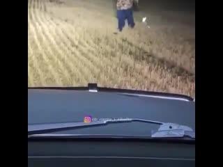 охота на зайца jjnf yf pfqwf jjnf yf pfqwf jjnf yf pfqwf