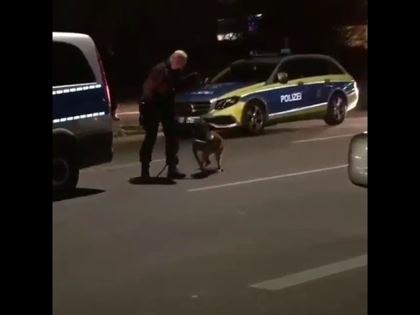 Stuttgart Zuffenhausen Polizei stürmte am Samstag eine Shisha Bar und beendete eine Coronaparty