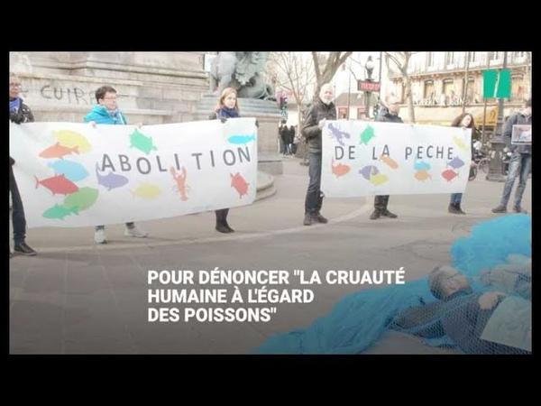 Des militants Vegan Impact s'entravent dans des filets de pêche à Paris