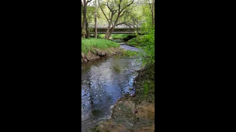 Жизнь 🌍подобна медленно текущей реке Все в ней непостоянно всё течет всё меняется всё исчезает 🏞