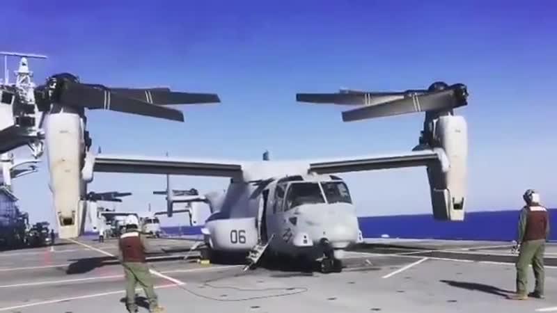 Osprey-раскладушка