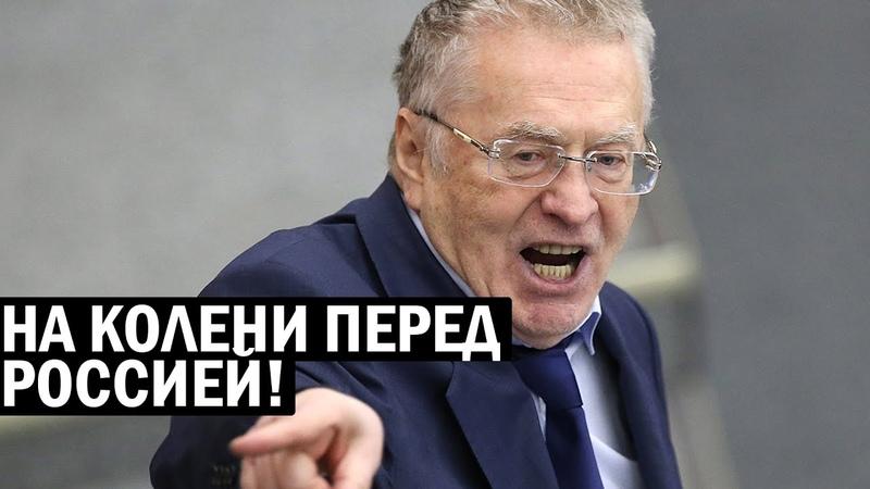 Перед Россией должны встать на колени как перед афроамериканцами Жириновский жжёт новости