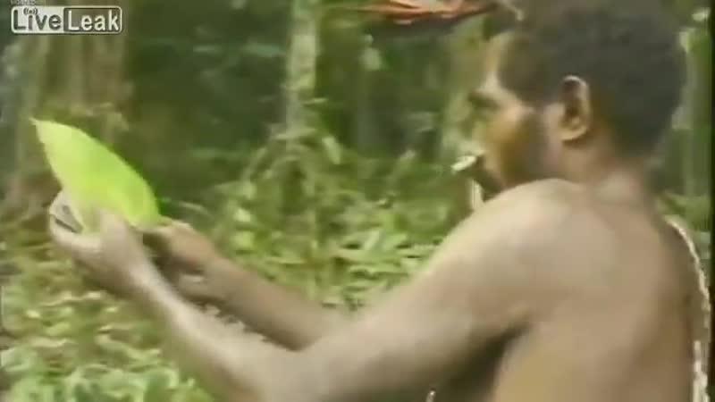 Уникальное видео. Первая встреча с белым человеком.