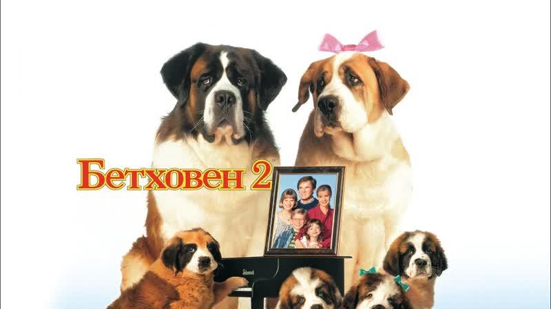 ➡ Бетховен 2 (1993) Full HD 1080 Перевод Профессиональный,многоголосый.