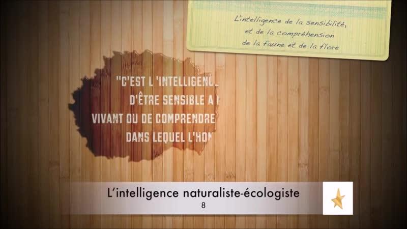 📋 Qu'est-ce que l'Intelligence Naturaliste Écologiste ? {Howard Gardner} ✔2,5 🇫🇷