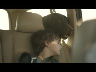Мальчик и его пёс Дак