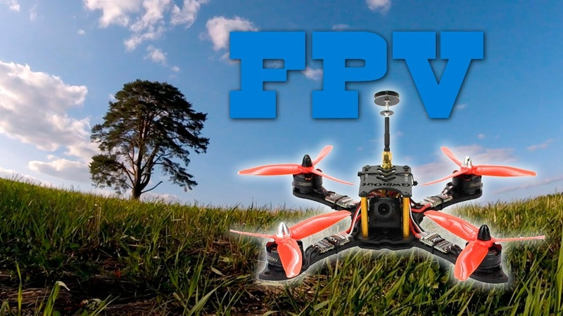 FPV полеты у сосны