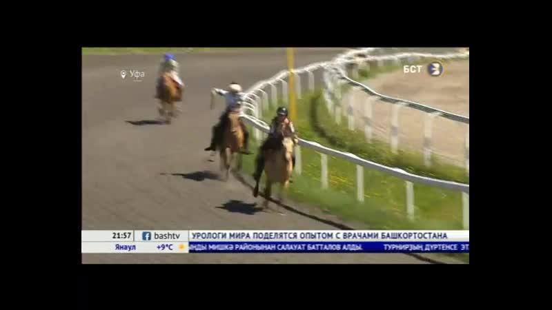 В Уфе прошел четвертый этап конного турнира «Терра Башкирия»