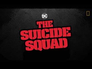 Отряд самоубийц: Миссия навылет  ролик о персонажах