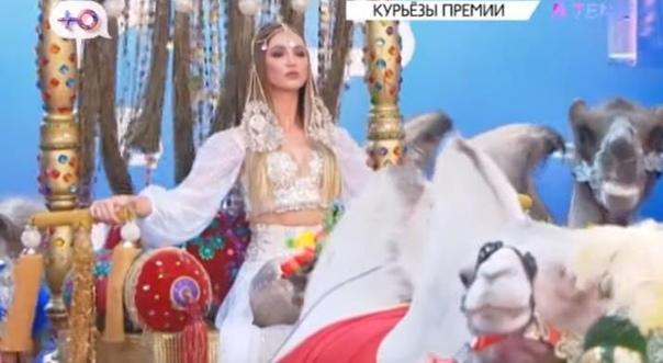 """Канал """"Ру-Тв"""" сообщил, что верблюды покакали на красную ковровую дорожку на премии """"Муз-Тв"""""""