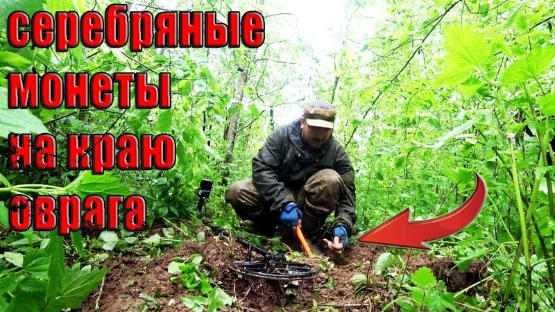 Нашли серебряные монеты на краю старого оврага Коп в лесу