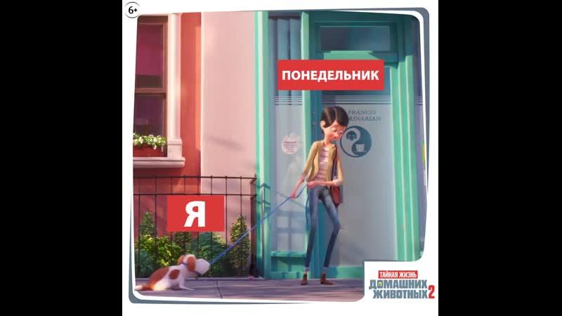Тайная жизнь домашних животных 2 - в кино с 30 мая