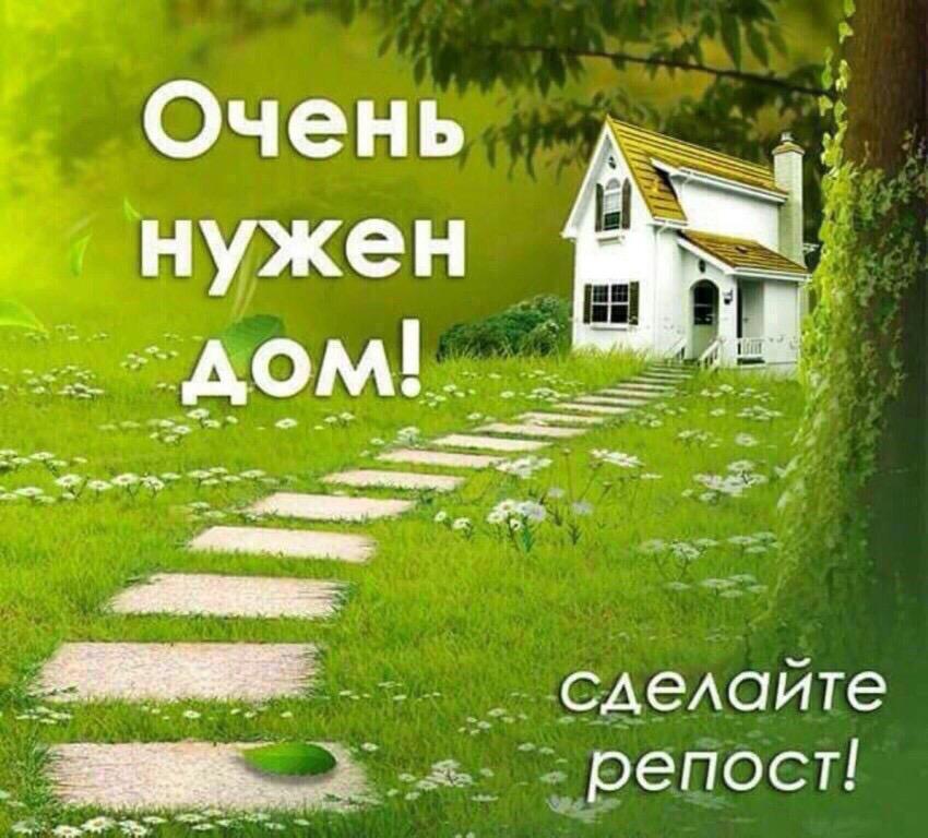 Тучково-Руза. Доставка обсуждается !Счастье в дом!)  Очень