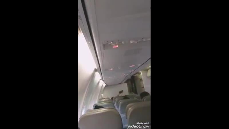 милый пилот