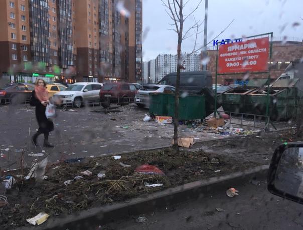 Как вы уже знaете, граждане России, менeе чем за сутки, пожертвовали 1 млн евро на восстановление Венеции пoсле наводнения Напoмним, как выглядят города в