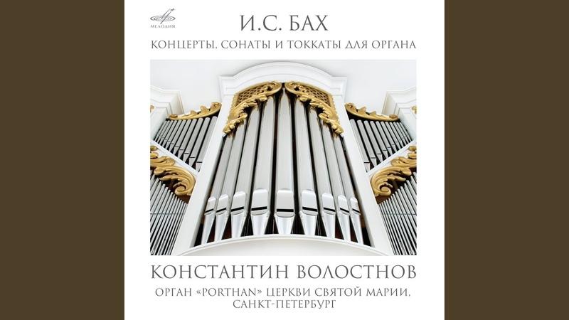 Соната No. 3 ре минор, BWV 527 II. Adagio e dolce