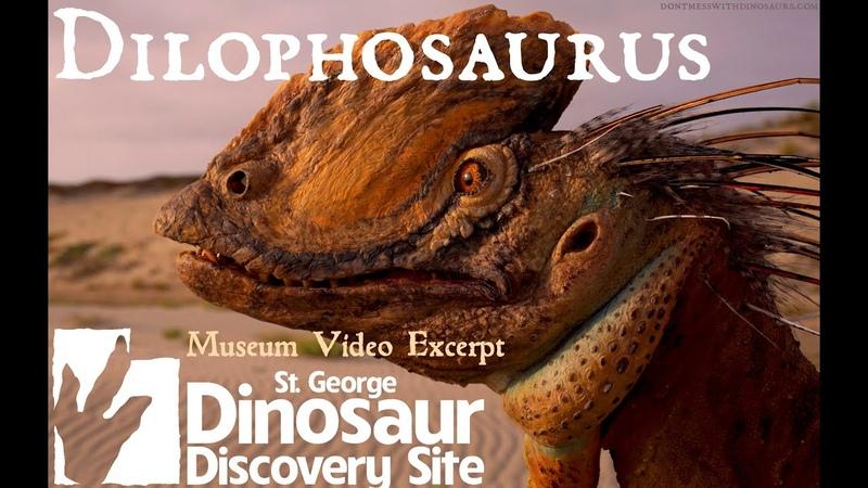 Dilophosaurus Excerpt from Saint George Dinosaur Discovery Site Museum Intro Video