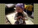 Девочка играет с котиком 2017