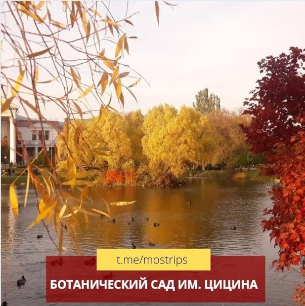 ТОП-6 красивых садов и парков осенней Москвы:...
