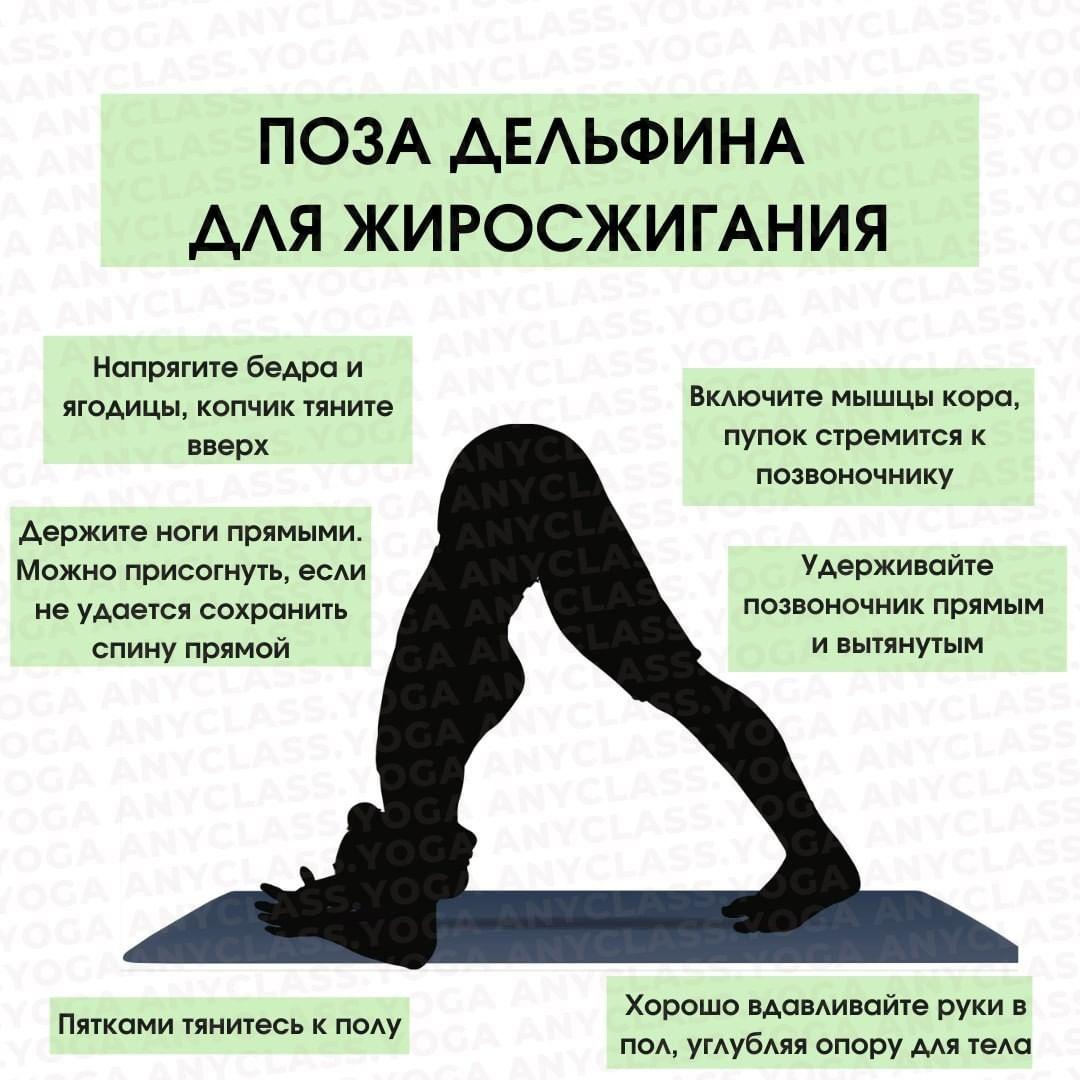 Упражнение выглядит похожим на позу Собаки мордой вниз.