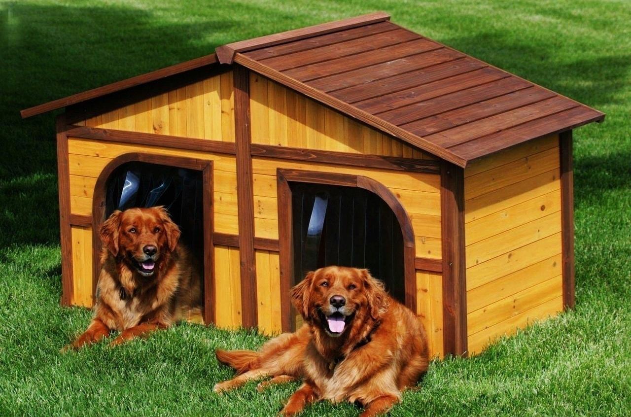 Бизнес-идея: Изготовление будок для собак Тенденция россиян