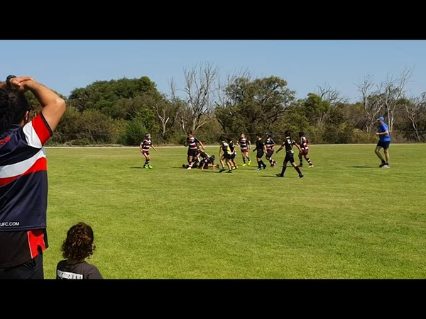 Southern Lions Under 10 s Rugby 7 s Tournament grass roots rugby WA