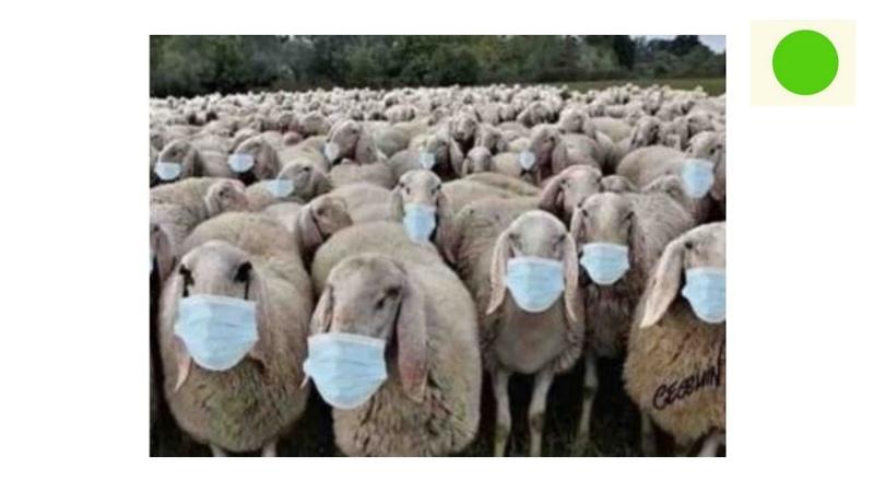 COUP D ETAT MONDIAL CONTRE LES PEUPLES : Masques et mesures barrière sont inutiles !
