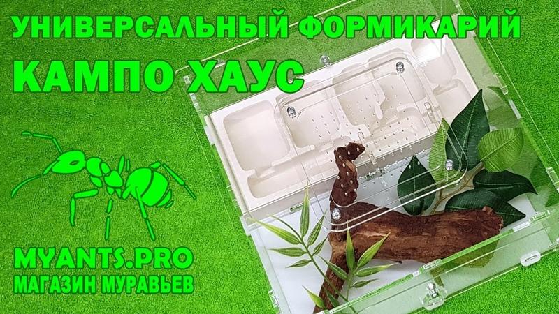 Универсальный формикарий Кампо Хаус практически для любых видов муравьев