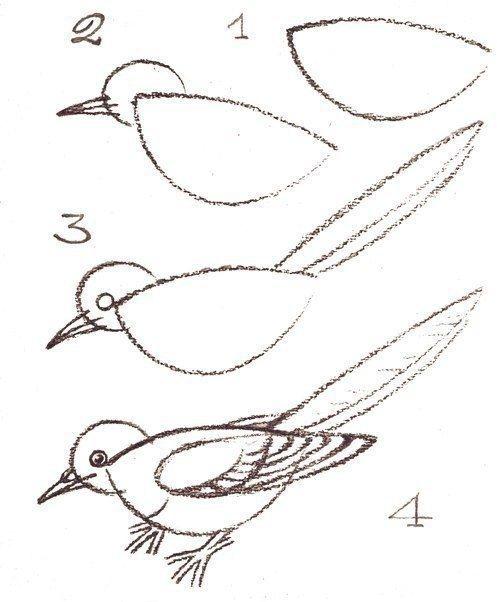 УЧИМСЯ РИСОВАТЬ ПТИЦ 1 апреля - День птиц