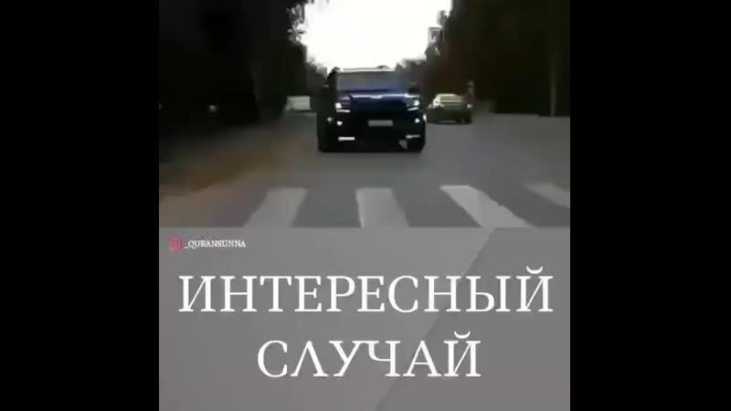 ддд mp4