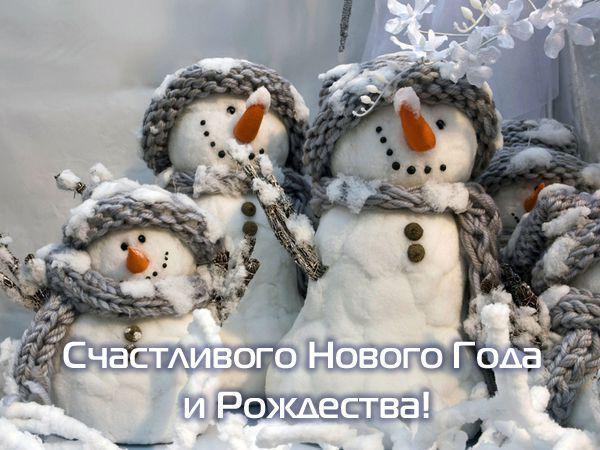 С Новым Годом!!! (источник: gofazenda)