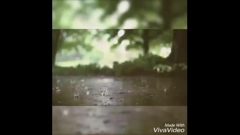 Поэзия Сенің жалғыздығыңды ұнаттым Қалқаман Саринпоэзиятамаша Оқыған Айгерім Ашықбаева mp4