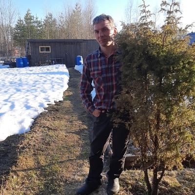 Андрей, 44, Segezha