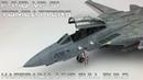 FULL VIDEO BUILD Hasegawa 1/48 F-14 VF 31 Tomcatters
