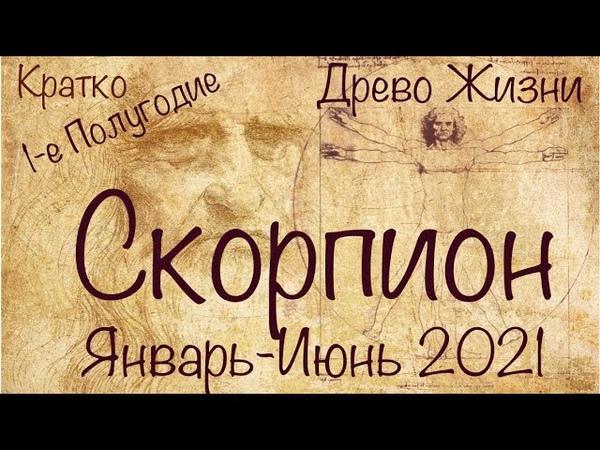 СКОРПИОН ♏️ Расклад на 1-е Полугодие 2021 годаКаббалистическое таро