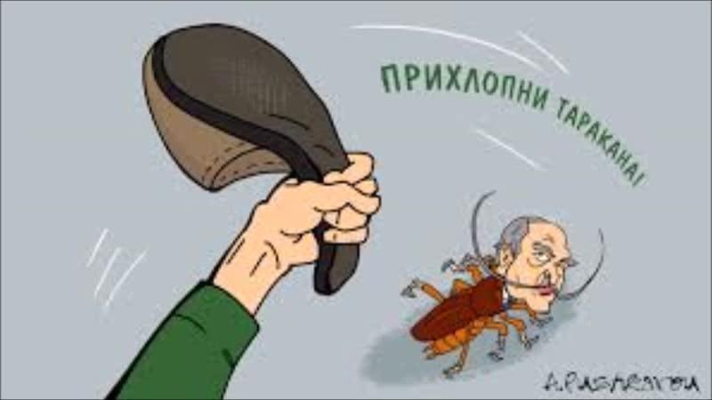 лукашенко таракан 2