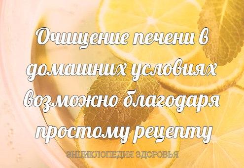 Очищение печени в домашних условиях возможно благодаря простому рецепту мятно-лимонного напитка