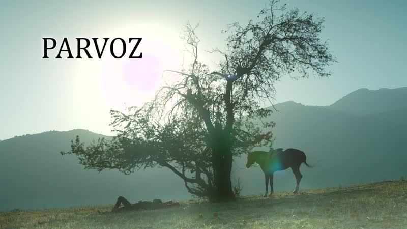 PARVOZ (ПОЛЕТ) трейлер