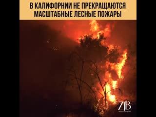 В Калифорнии не прекращаются масштабные лесные пожары