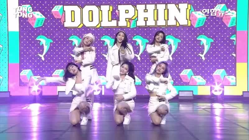 LIVE OH MY GIRL 오마이걸 Dolphin Showcase Stage 쇼케이스 무대 효정 미미 유아 승희 지호 비니 아린 통통TV
