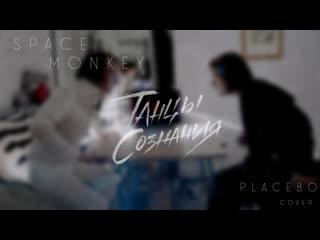 Танцы Сознания  Space monkey (Placebo cover)